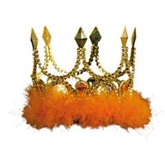 Kroon Goud mini princess Oranje