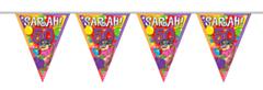 Vlaggenlijn Sarah Explosion