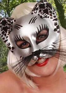 Oog half masker zilver/zwart kat