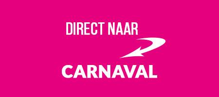 Carnaval artikelen